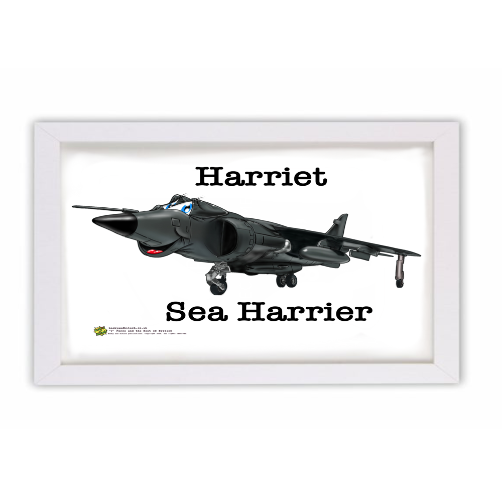harriet frame